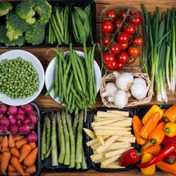 vegetables-250x250